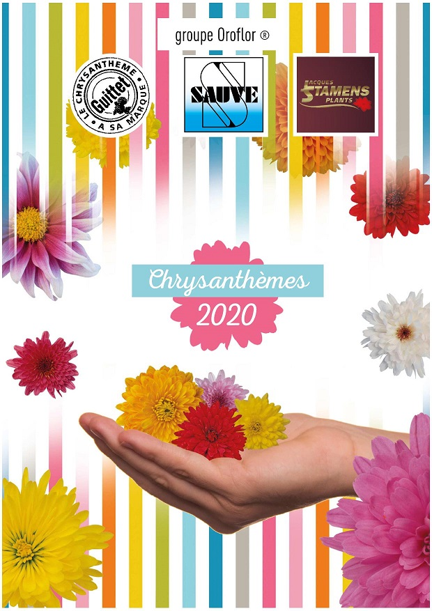 CATALOGUE SAUVE GUITTET CHRYSANTHEMES 2020 CATA COUVERTURE ALLEGEE
